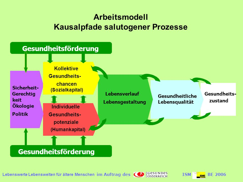 Kausalpfade salutogener Prozesse