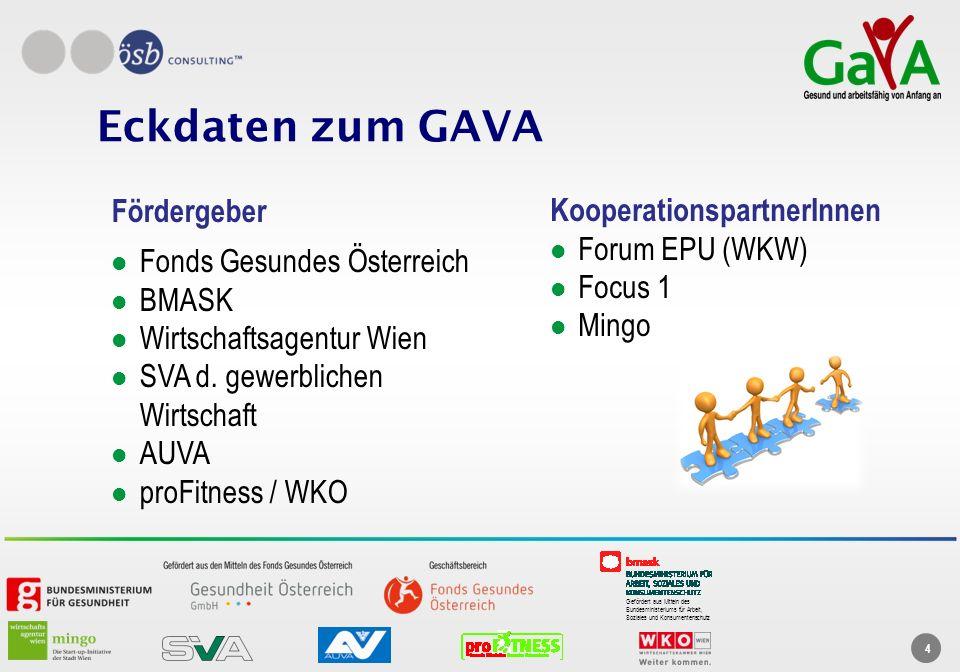 Eckdaten zum GAVA Fördergeber KooperationspartnerInnen Forum EPU (WKW)