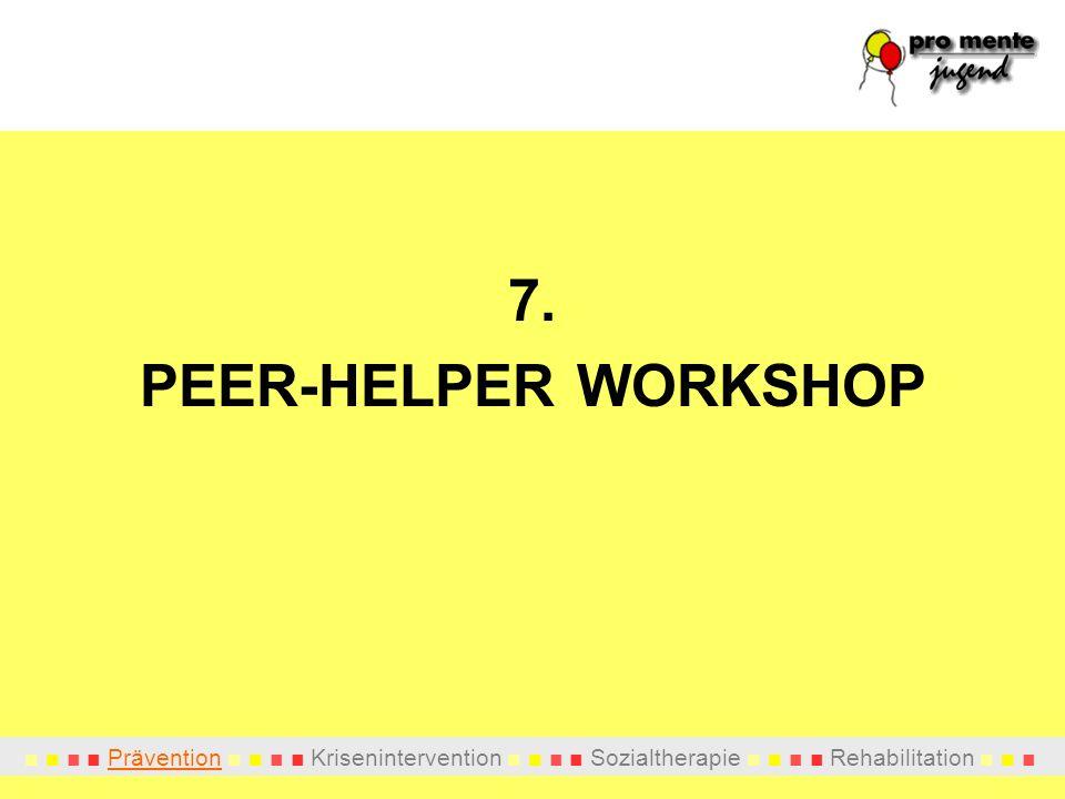 7. PEER-HELPER WORKSHOP
