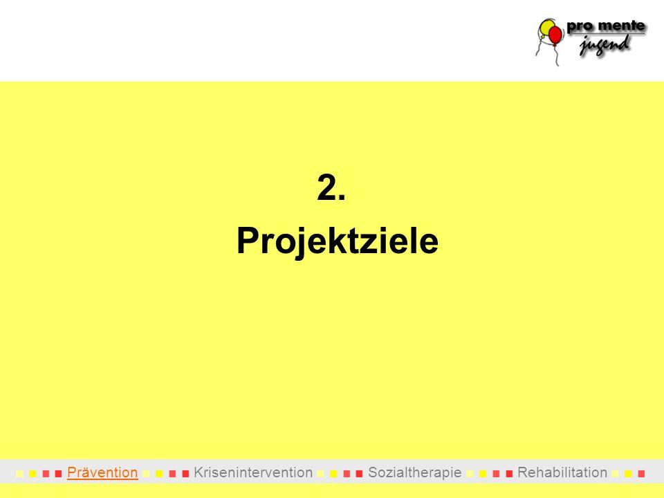 2. Projektziele