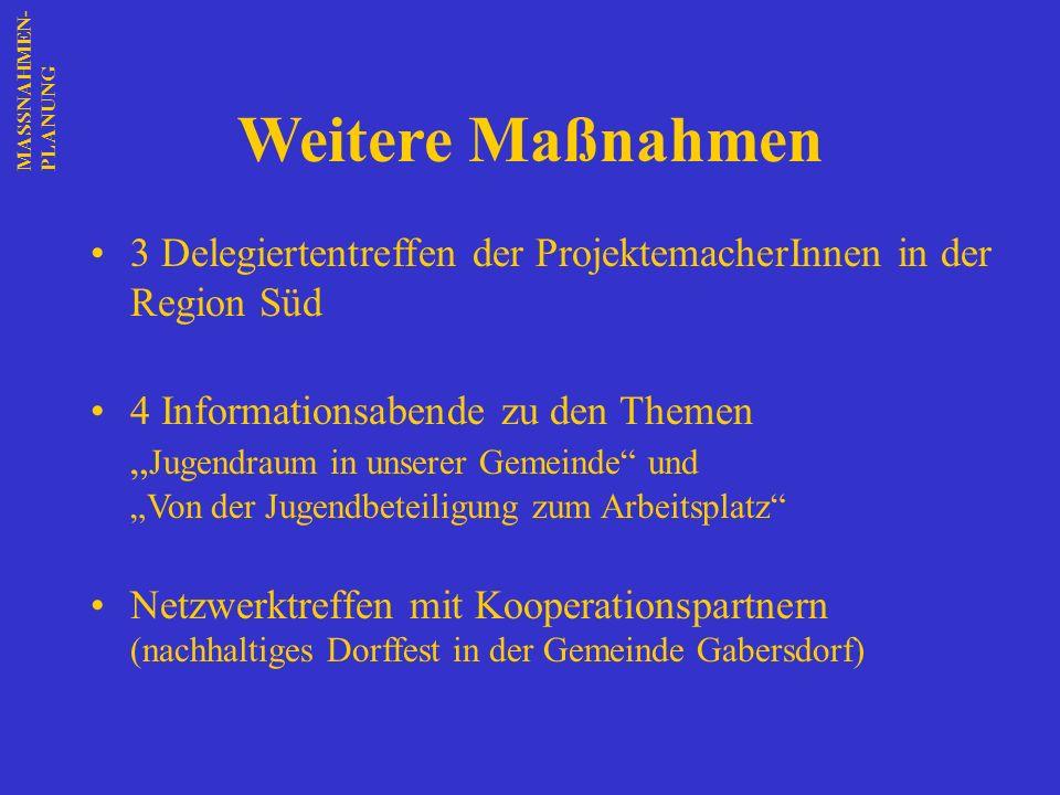 MASSNAHMEN-PLANUNG Weitere Maßnahmen. 3 Delegiertentreffen der ProjektemacherInnen in der Region Süd.