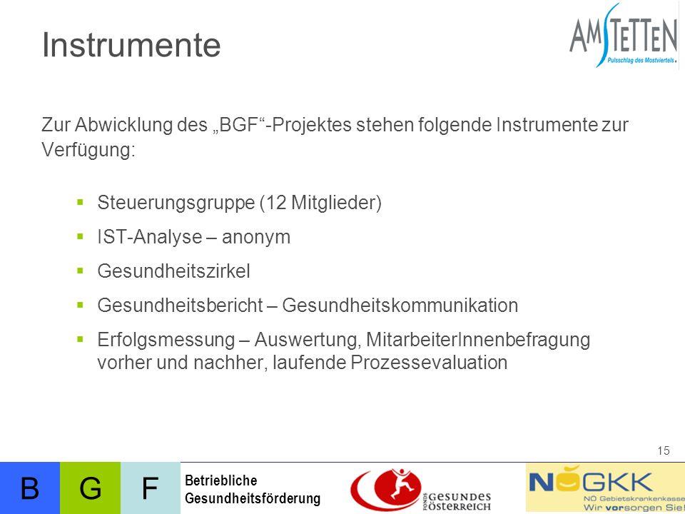 """Instrumente Zur Abwicklung des """"BGF -Projektes stehen folgende Instrumente zur. Verfügung: Steuerungsgruppe (12 Mitglieder)"""