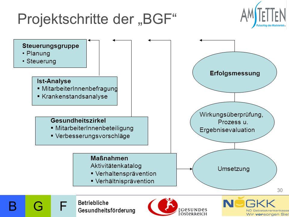 """Projektschritte der """"BGF"""