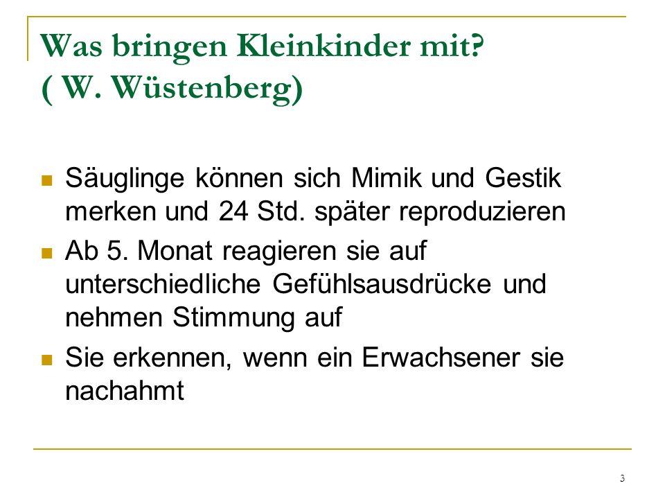 Was bringen Kleinkinder mit ( W. Wüstenberg)