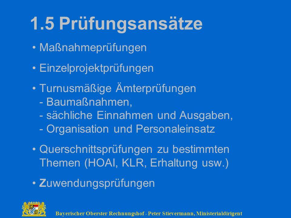 1.5 Prüfungsansätze Maßnahmeprüfungen Einzelprojektprüfungen