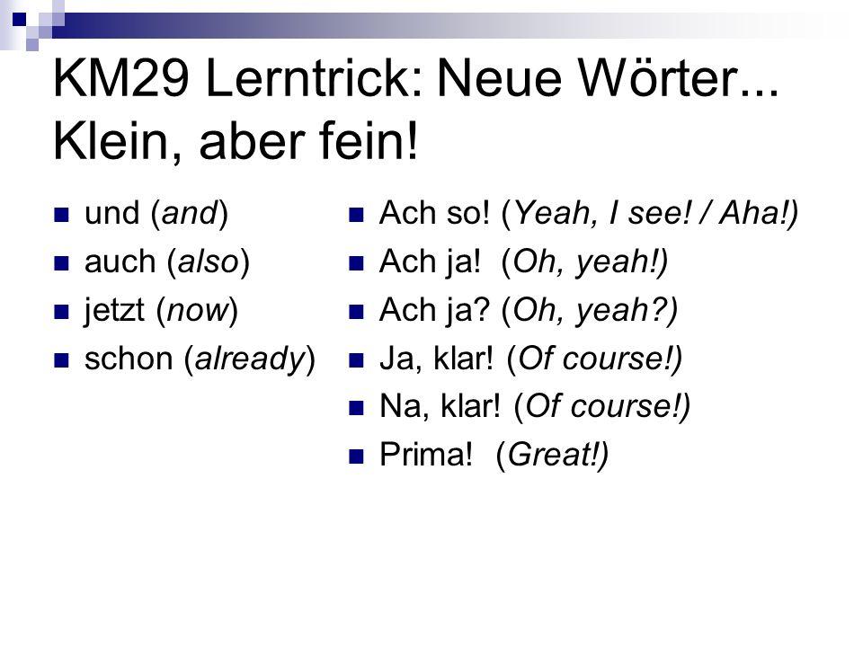 KM29 Lerntrick: Neue Wörter... Klein, aber fein!