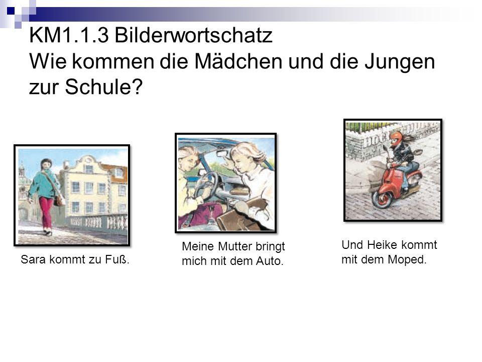 KM1.1.3 Bilderwortschatz Wie kommen die Mädchen und die Jungen zur Schule