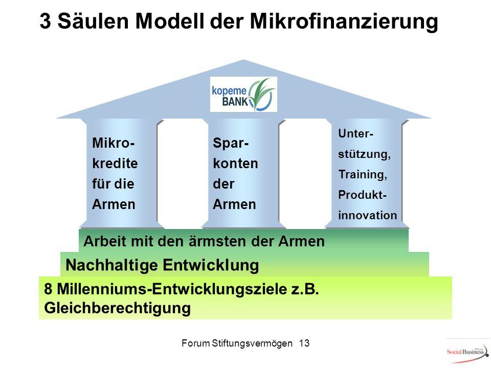 Forum Stiftungsvermögen 13