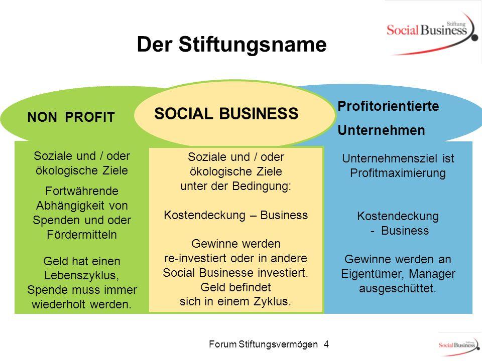 Der Stiftungsname SOCIAL BUSINESS Profitorientierte Unternehmen