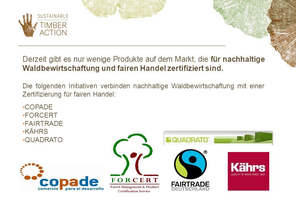 Derzeit gibt es nur wenige Produkte auf dem Markt, die für nachhaltige Waldbewirtschaftung und fairen Handel zertifiziert sind.
