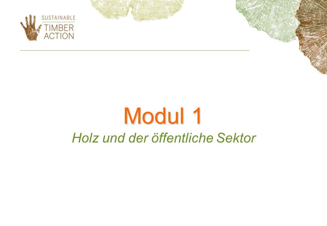 Holz und der öffentliche Sektor