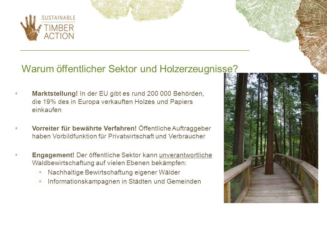 Warum öffentlicher Sektor und Holzerzeugnisse