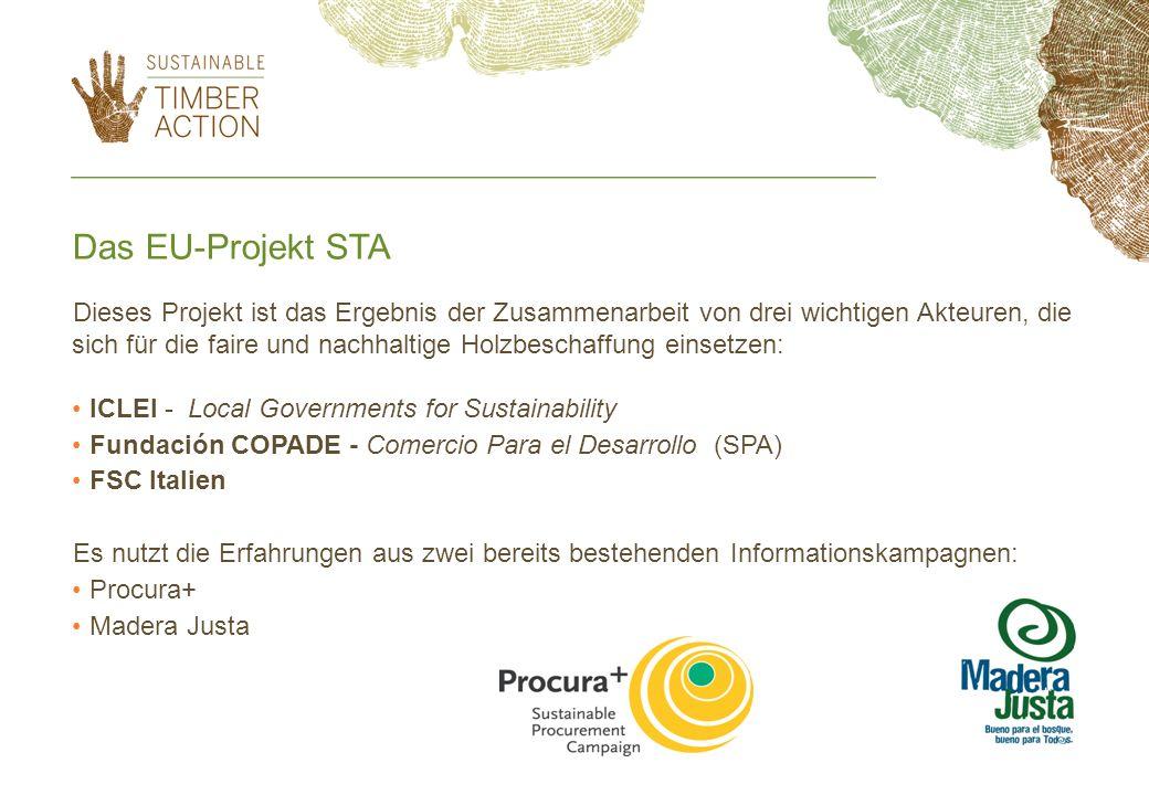 Das EU-Projekt STA