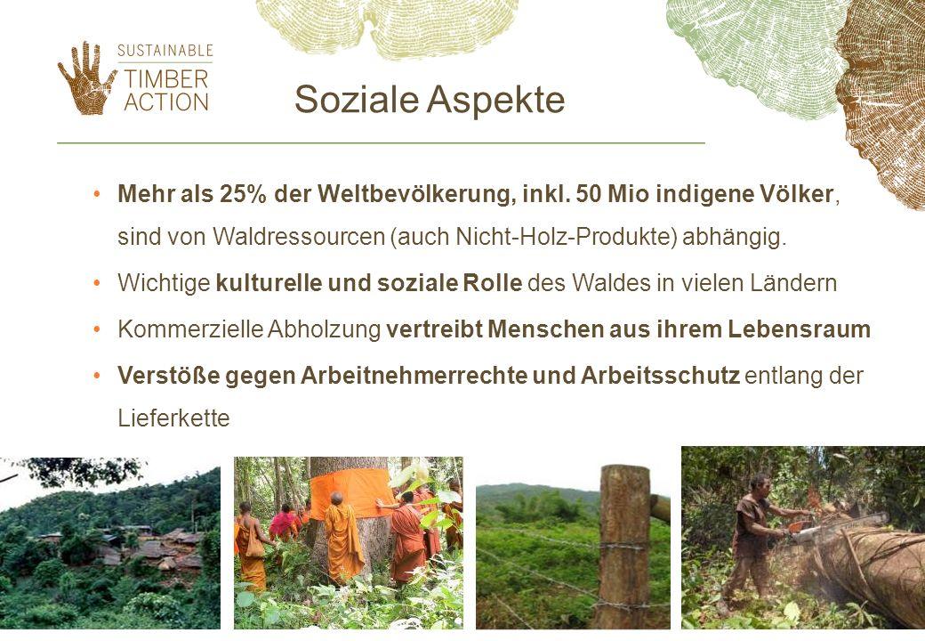Soziale Aspekte Mehr als 25% der Weltbevölkerung, inkl. 50 Mio indigene Völker, sind von Waldressourcen (auch Nicht-Holz-Produkte) abhängig.