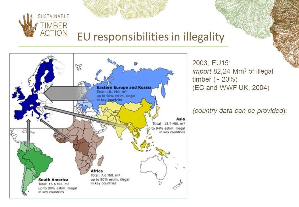 EU responsibilities in illegality