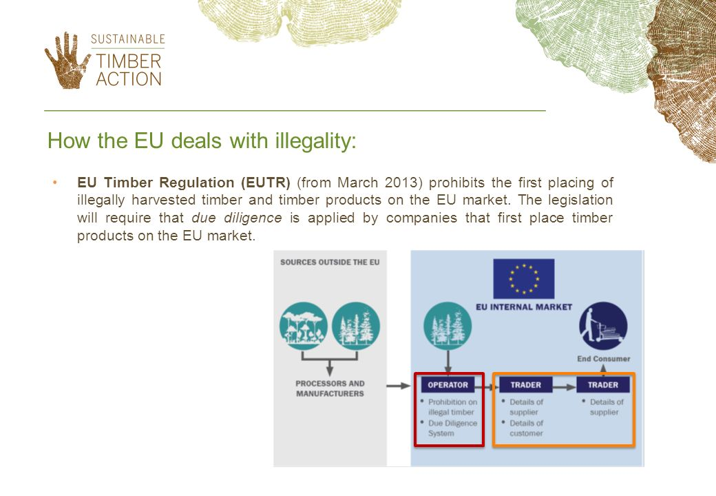 How the EU deals with illegality: