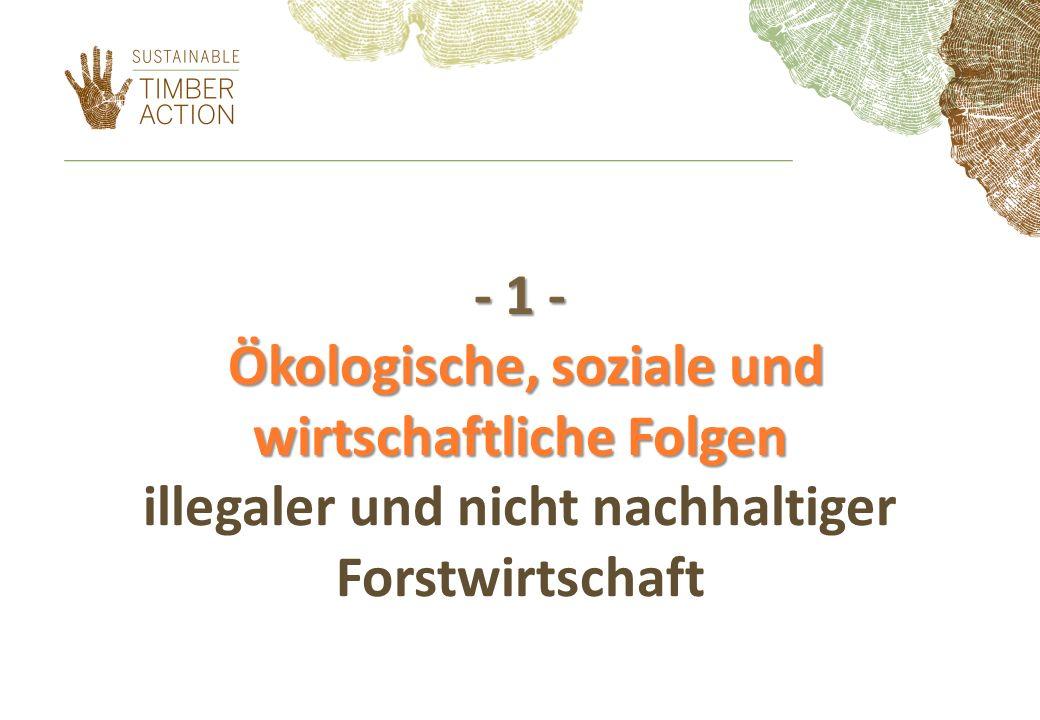 - 1 - Ökologische, soziale und wirtschaftliche Folgen illegaler und nicht nachhaltiger Forstwirtschaft