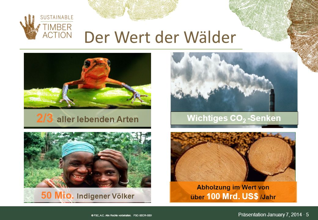 Abholzung im Wert von über 100 Mrd. US$ /Jahr
