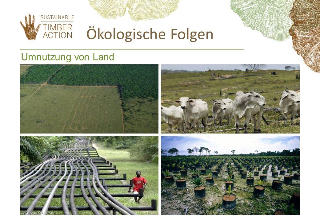 Ökologische Folgen Umnutzung von Land 7