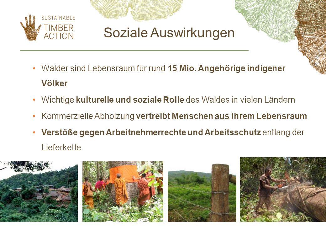 Soziale Auswirkungen Wälder sind Lebensraum für rund 15 Mio. Angehörige indigener Völker.