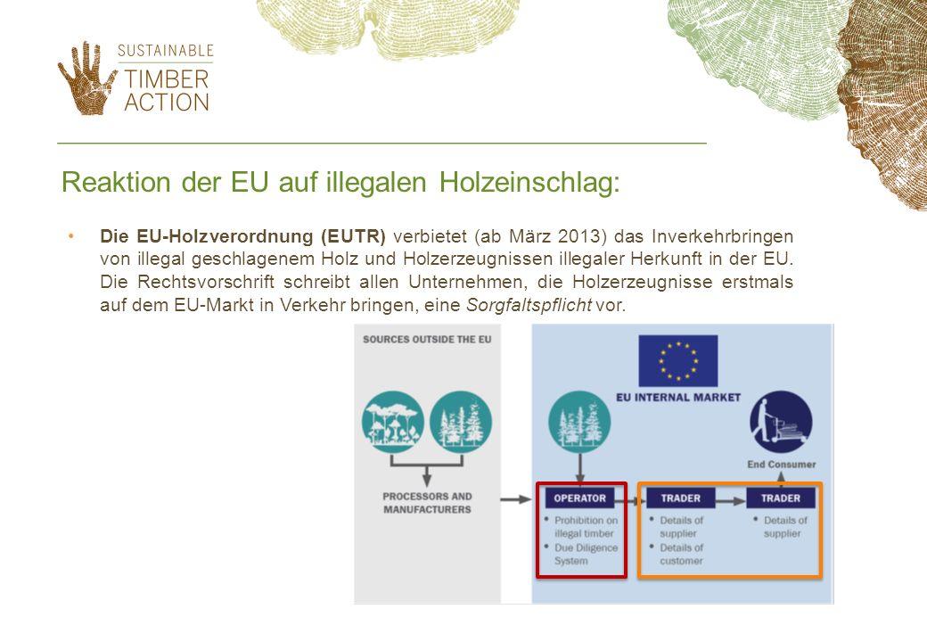 Reaktion der EU auf illegalen Holzeinschlag: