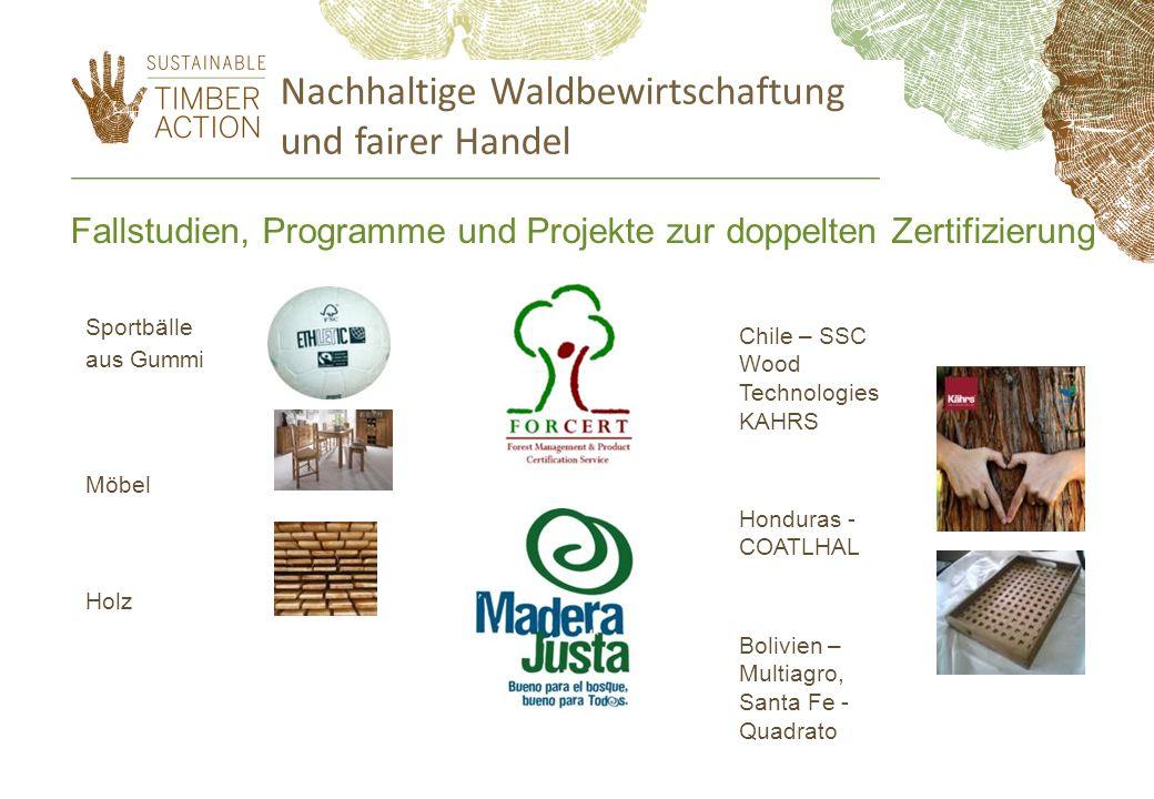 Nachhaltige Waldbewirtschaftung und fairer Handel