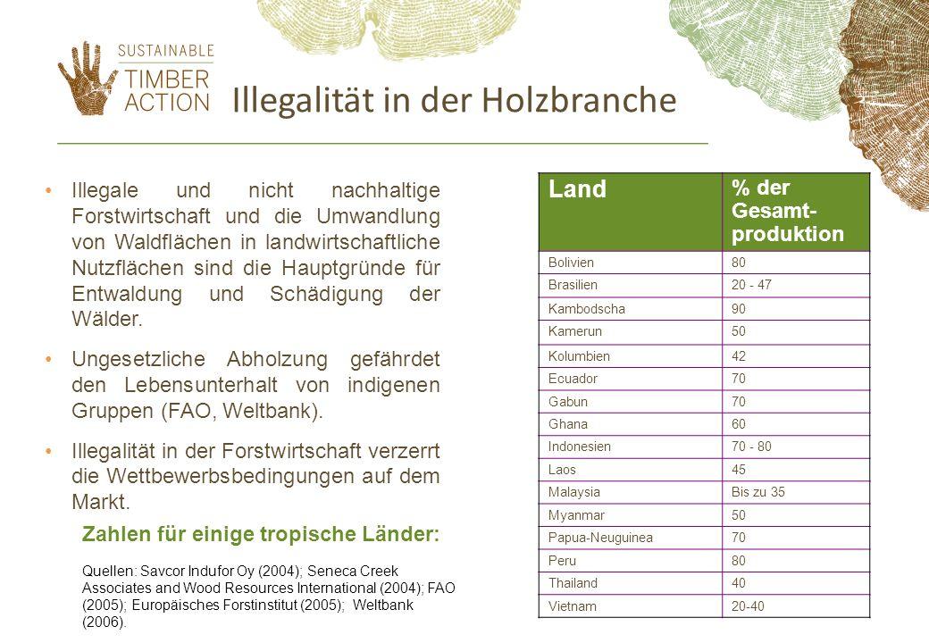 Illegalität in der Holzbranche