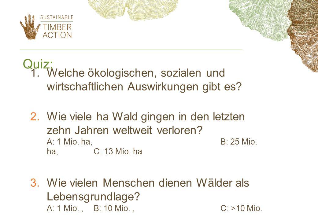 Quiz: Welche ökologischen, sozialen und wirtschaftlichen Auswirkungen gibt es
