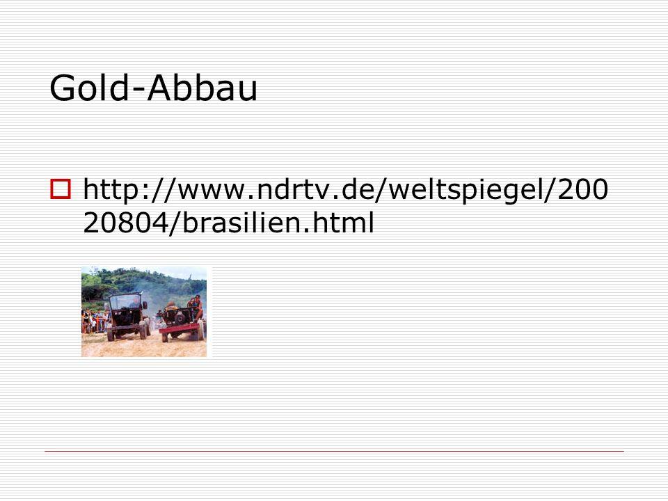 Gold-Abbau http://www.ndrtv.de/weltspiegel/20020804/brasilien.html
