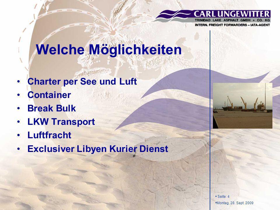 Welche Möglichkeiten Charter per See und Luft Container Break Bulk