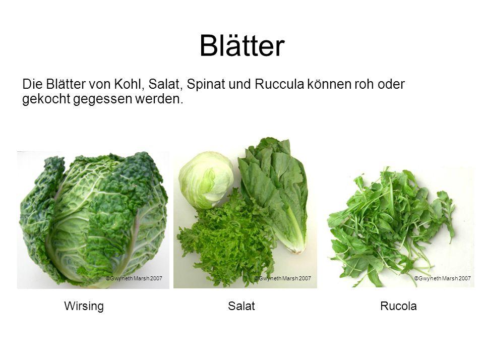 BlätterDie Blätter von Kohl, Salat, Spinat und Ruccula können roh oder gekocht gegessen werden. ©Gwyneth Marsh 2007.