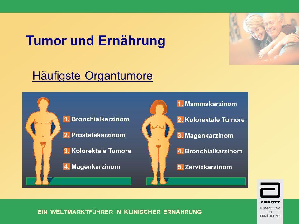 Tumor und Ernährung Häufigste Organtumore