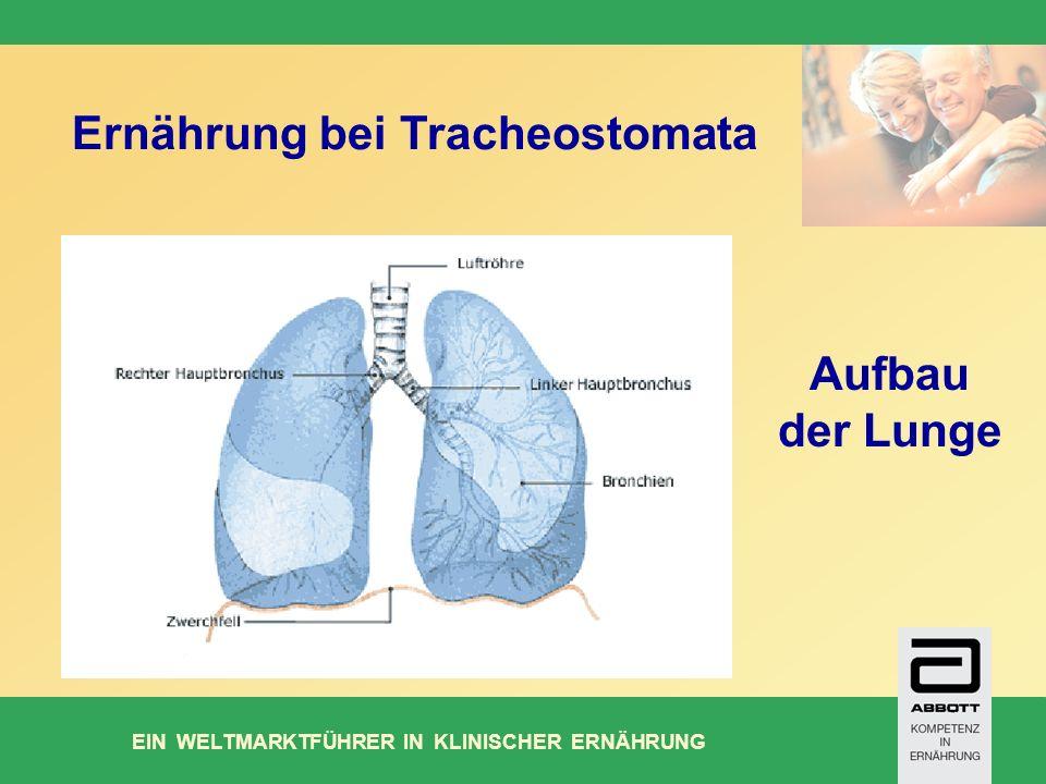 Ernährung bei Tracheostomata
