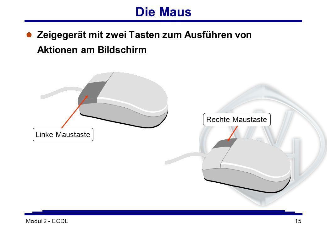 Die MausZeigegerät mit zwei Tasten zum Ausführen von Aktionen am Bildschirm. Rechte Maustaste. Linke Maustaste.