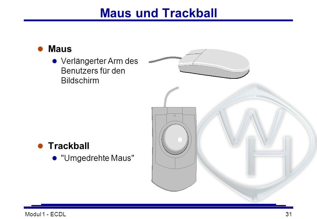 Maus und Trackball Maus Trackball