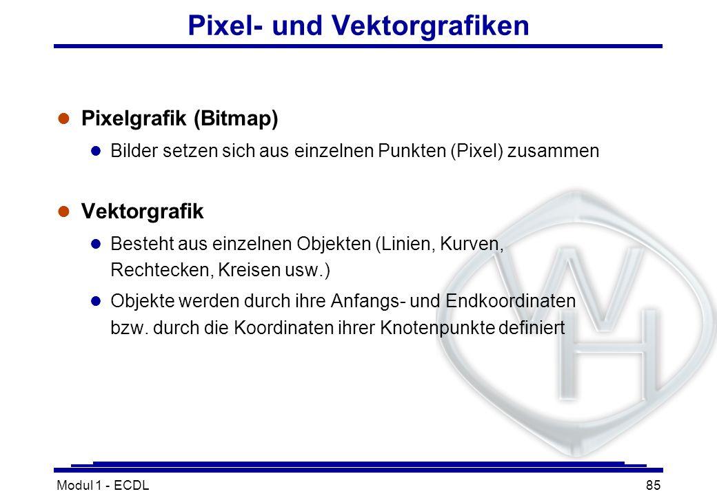 Pixel- und Vektorgrafiken
