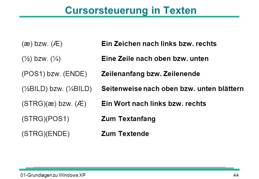 Cursorsteuerung in Texten