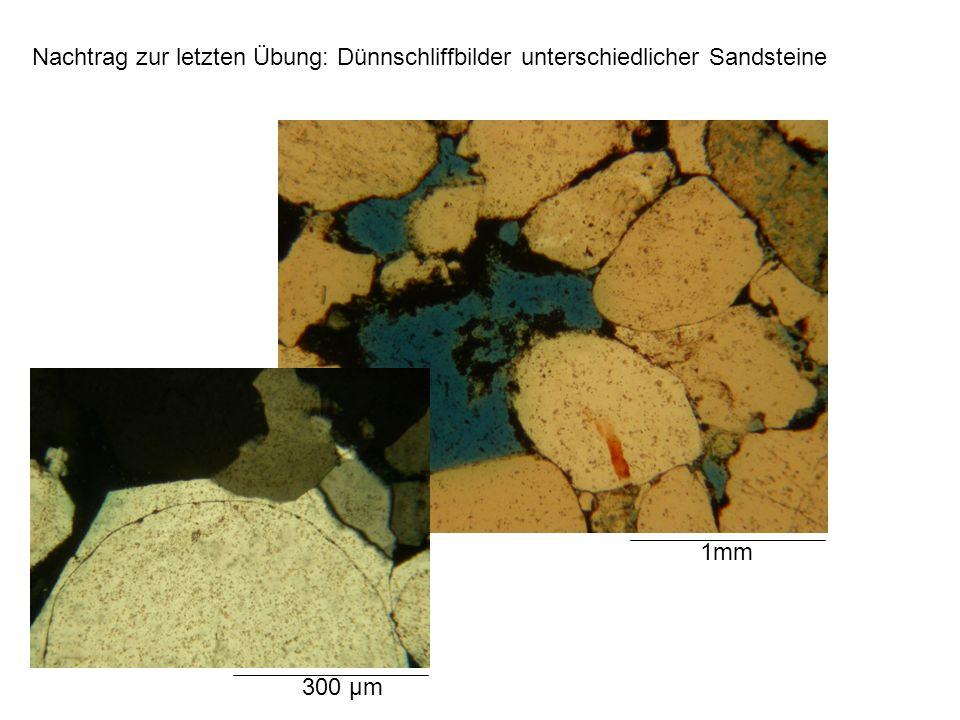Nachtrag zur letzten Übung: Dünnschliffbilder unterschiedlicher Sandsteine