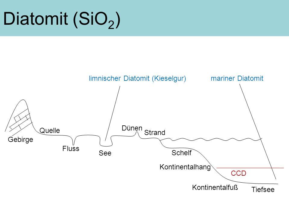 Diatomit (SiO2) limnischer Diatomit (Kieselgur) mariner Diatomit Dünen