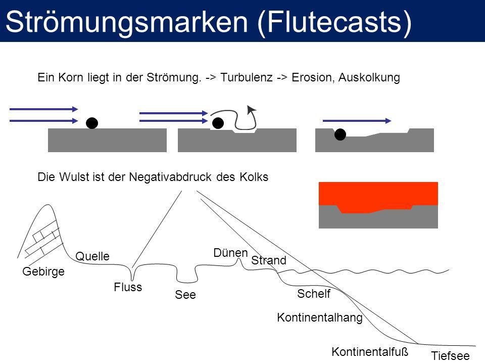Strömungsmarken (Flutecasts)