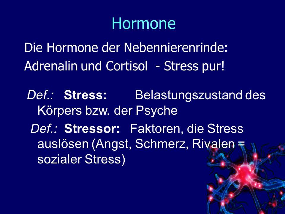Hormone Die Hormone der Nebennierenrinde: