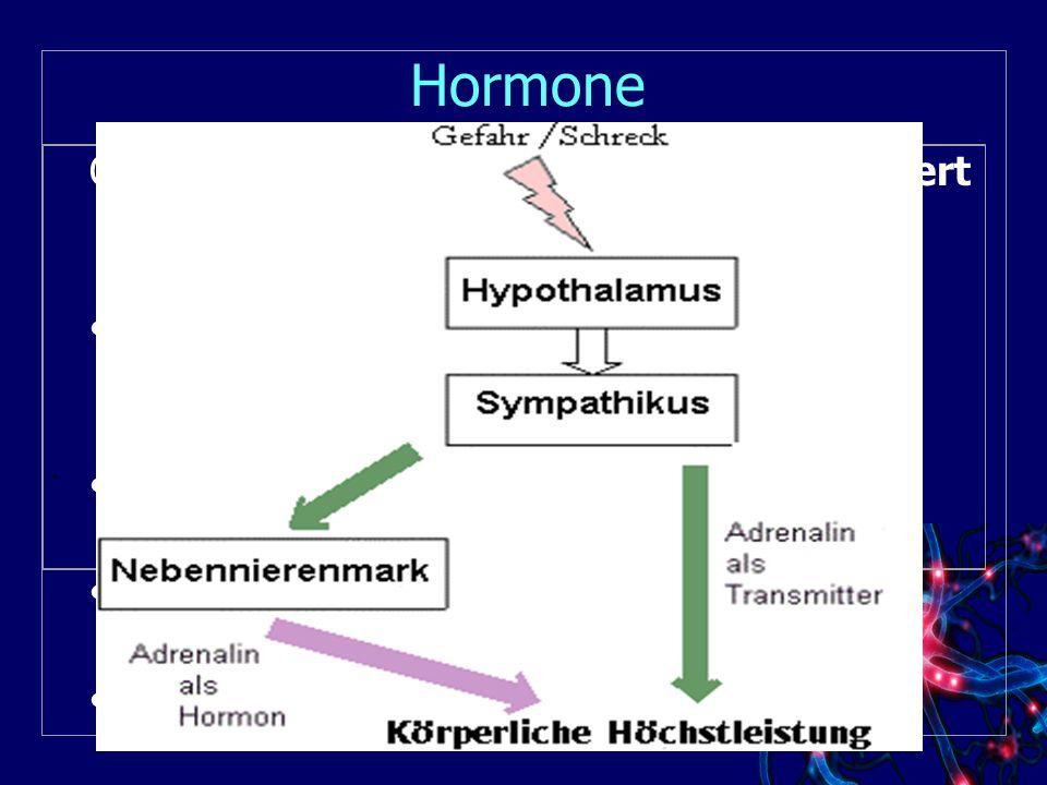 Hormone Organsysteme, die in Stresssituationen aktiviert werden :