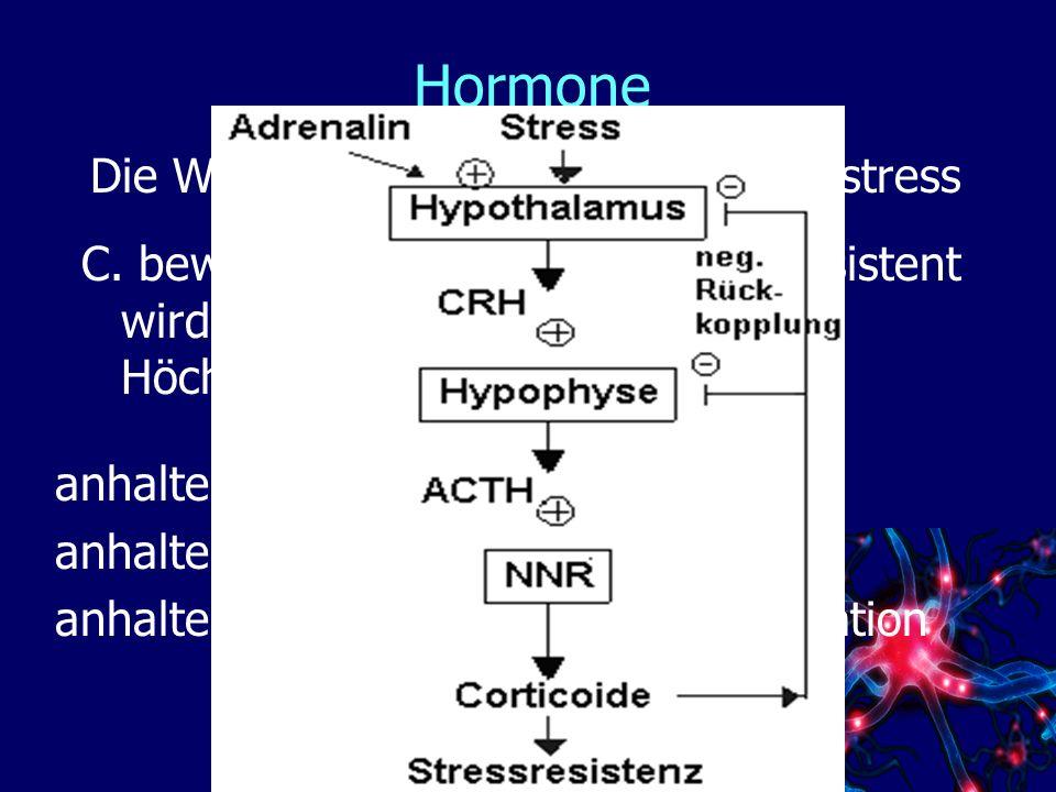 Hormone Die Wirkung des Cortisols - Langzeitstress
