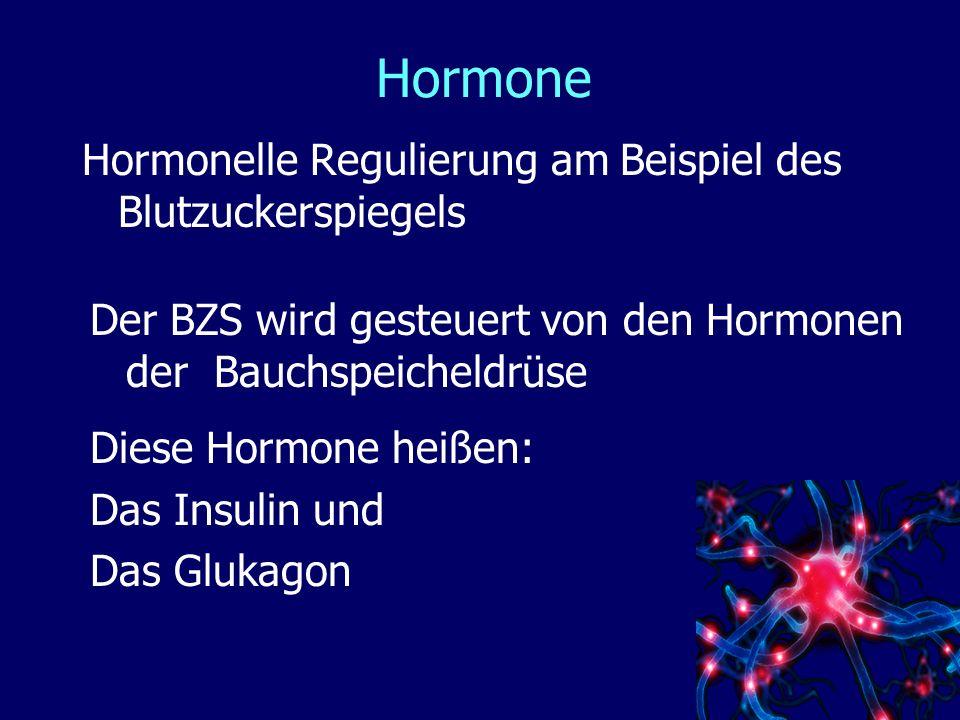 Hormone Hormonelle Regulierung am Beispiel des Blutzuckerspiegels