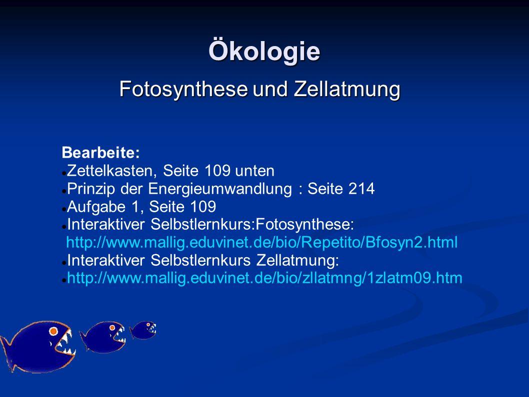 Fotosynthese und Zellatmung