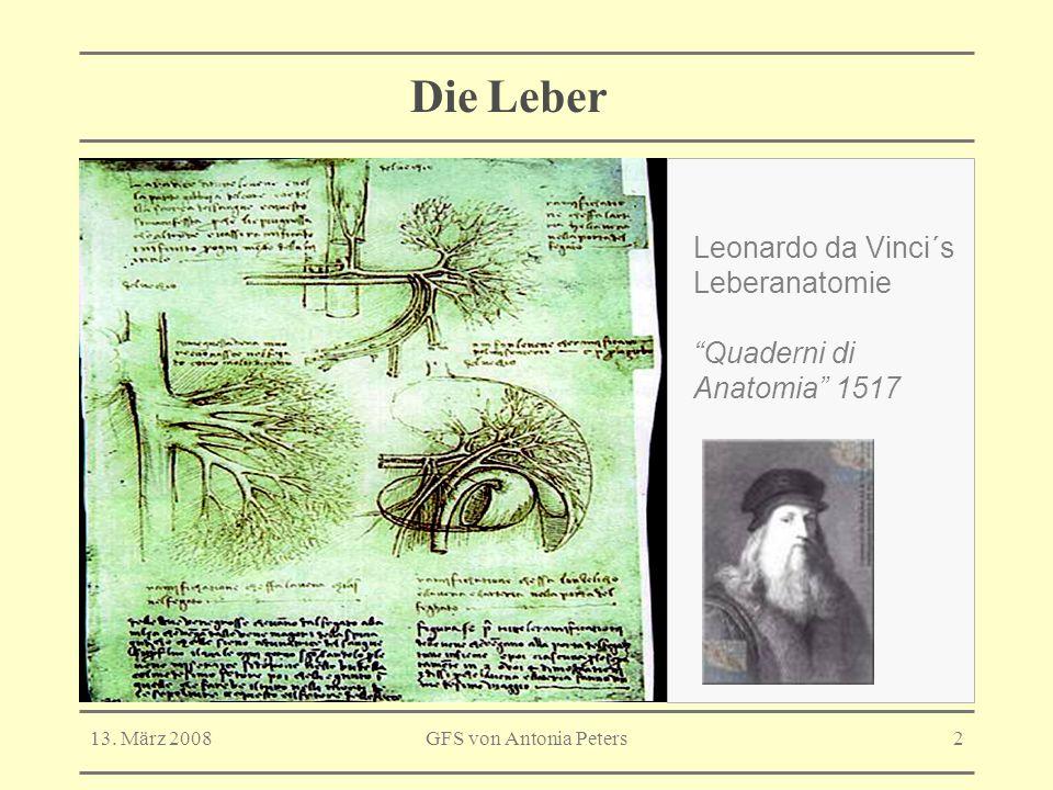 Die Leber Leonardo da Vinci´s Leberanatomie