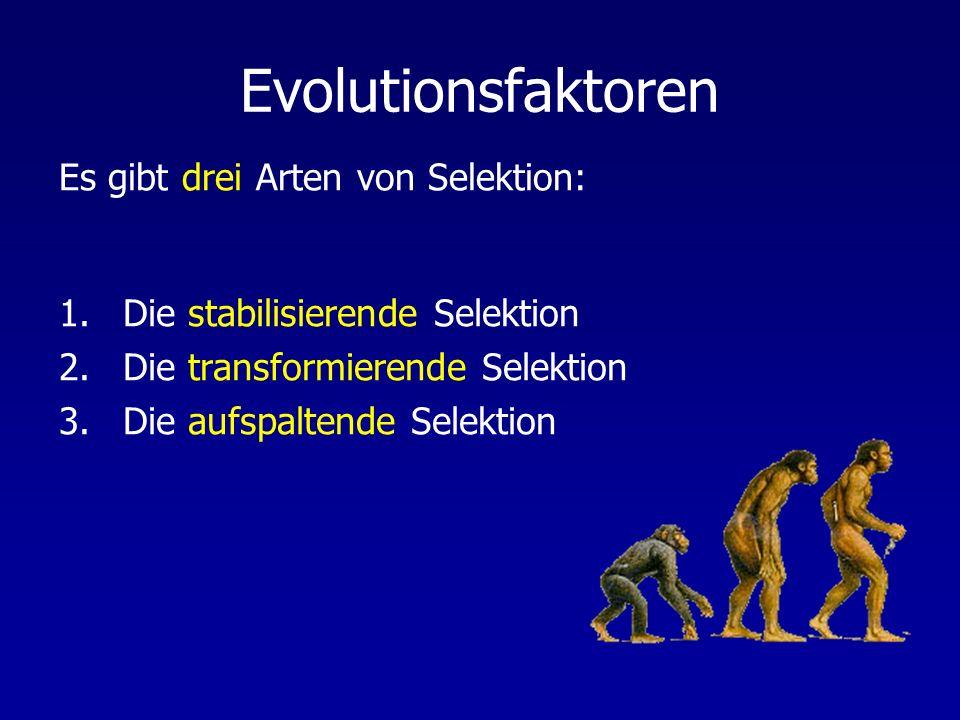 Evolutionsfaktoren Es gibt drei Arten von Selektion: