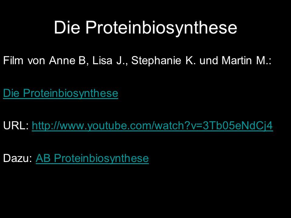 Die Proteinbiosynthese