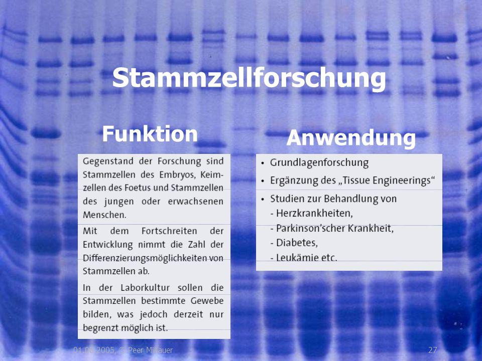Stammzellforschung Funktion Anwendung 01.08.2005, © Peer Millauer 27