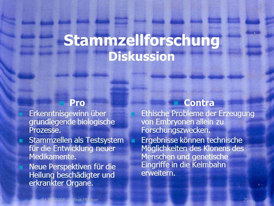 Stammzellforschung Diskussion